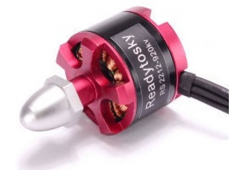 Readytosky RS 2212-920 kv (CW)